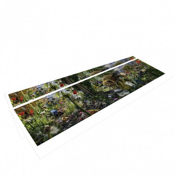 CAROLAS GARTEN – Panoramapostkarte