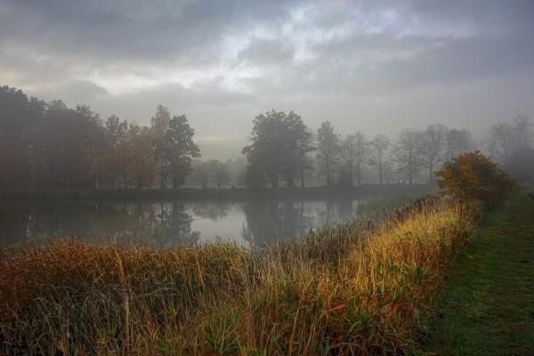 Wandbild Morgenstimmung Teichlandschaft im Hirschberger Tal (Motiv JR11)