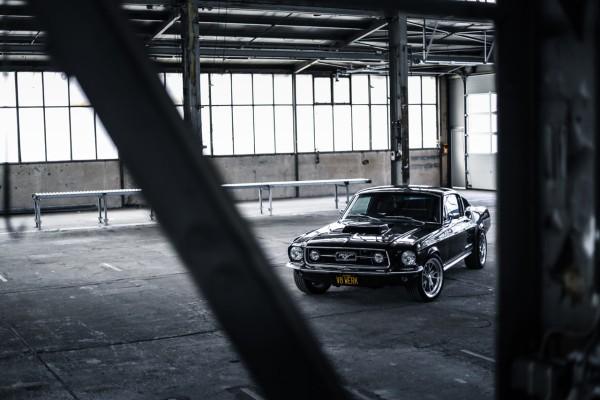 Wandbild 1967 Ford Mustang Fastback GT 390 (Motiv V8 01)
